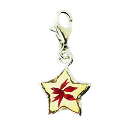 Charm Anh�nger Star